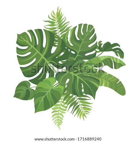 Tropical green leaves bouquet on white background. Palm branches composition. Vector illustration. #1716889240