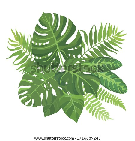 Tropical green leaves bouquet on white background. Palm branches composition. Vector illustration. #1716889243