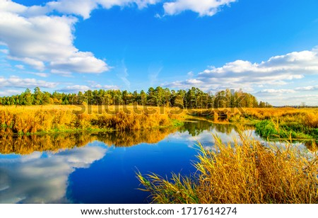 Nature rural pond water autumn landscape #1717614274