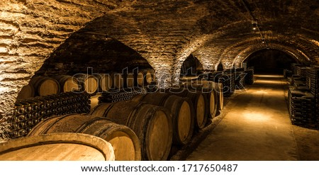 Old cellar with bottles and barrels under castle making wine Royalty-Free Stock Photo #1717650487