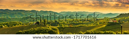 Panorama of South Styria Vineyards landscape near Austria - Slovenia border. View at Vineyard fields in sunset in spring. Tourist destination. Royalty-Free Stock Photo #1717701616