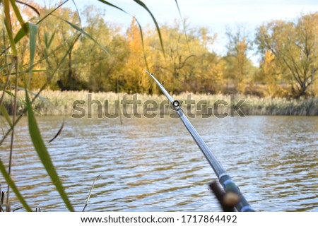 Autumn fishing, golden trees, blue water, light breeze, a canvas of paints, red, orange, yellow leaves on the trees, a long fishing rod #1717864492
