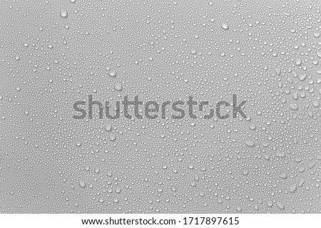 The concept of raindrops falling on a gray background Abstract wet white surface with bubbles on the surface Realistic pure water droplet water drops for creative banner design #1717897615