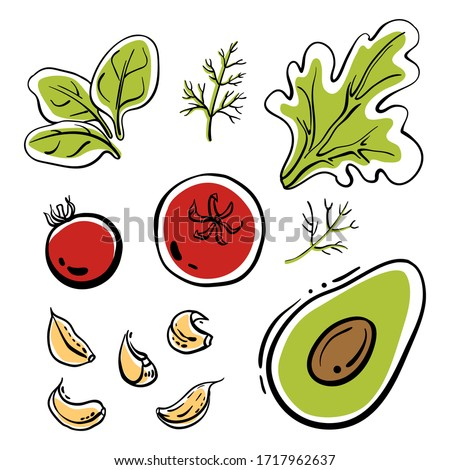 Spinach, tomatoes, garlic, avocado, dill, lettuce. Colorful sketch collection of salad vegetables and herbs isolated on white background. Doodle hand drawn vegetable icons. Vector illustration #1717962637