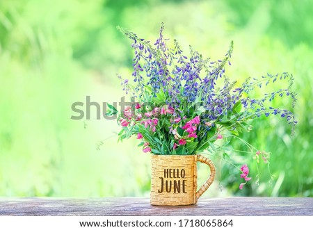 Hello June. meadow flowers in cup, in garden. Summer season concept. beautiful floral composition. copy space