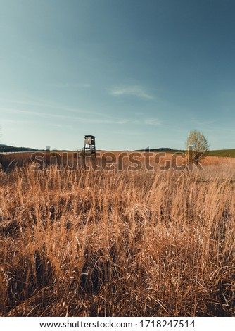 Vertical photo - lookout tower for hunting in the middle of dry field (meadow) with blue sky on background. Huting - observation point in wildness with green tree on background.