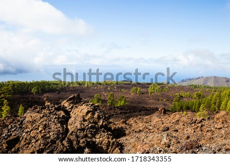 A view from volcano Mount Teide, in Teide National Park, in Tenerife, the highest elevation in Spain #1718343355