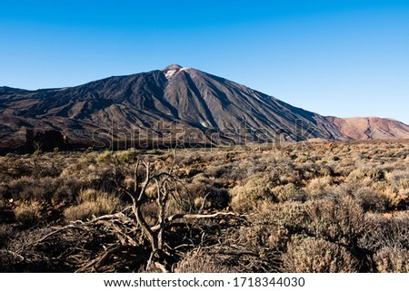 A view of volcano Mount Teide, in Teide National Park, in Tenerife, the highest elevation in Spain #1718344030