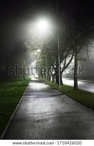 An empty illuminated bicycle road through the city park in a fog at night. Lanterns close-up. Recreation and healthy lifestyle theme. Riga, Latvia #1718426020
