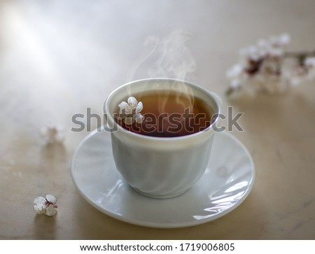 In a vase, apricot flowers with petals blooming in spring in a mug steaming tea tea tea apricot petals good morning with a ray of sunflower white flower image with selective focus