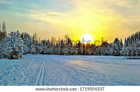 Winter snow nature sunset landscape. Sunset winter forest snow. Winter forest sunset sky #1719054337