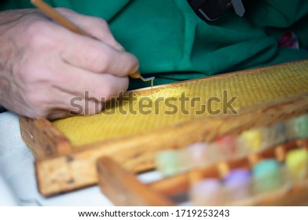 Larva of bee, selected for growing queen bee. Tool for picking larvae from honeycombs on a frame. Honeybee Queen Grafting from Larvae into DIY Queen Cups. Selestive focus. #1719253243