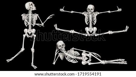 Human skeleton in different poses. Halloween clip art set on black background