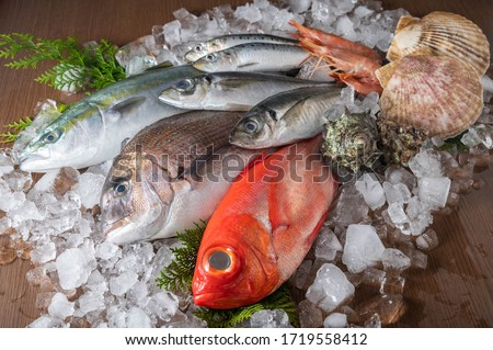 japanese fresh fishes and crustacean on ice Royalty-Free Stock Photo #1719558412