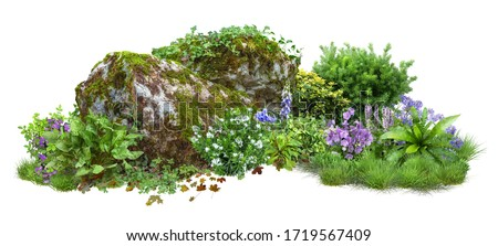 Cutout rock surrounded by flowers. Garden design isolated on white background. Flowering shrub and green plants for landscaping. Decorative shrub and flower bed. High quality clipping path. #1719567409