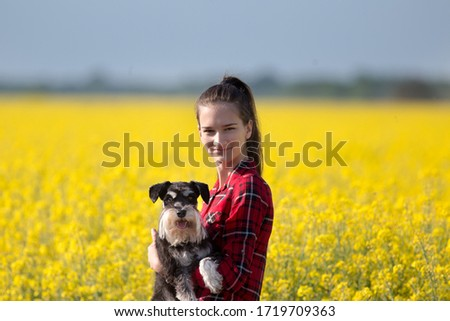Pretty teenage girl holding cute dog miniature schnauzer in rapeseed with yellow blooming flowers in springtime #1719709363
