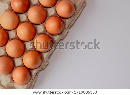 Egg carton isolated on white background with copy space on right. Eggs isolated on white background. White background with eggs. Food photography. Eggs photography. Brown eggs. #1719806353