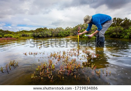 Scientist measuring water depth to install water level data loggers in a coastal wetland  to understand inundation period and impact on ecosystem services. #1719834886
