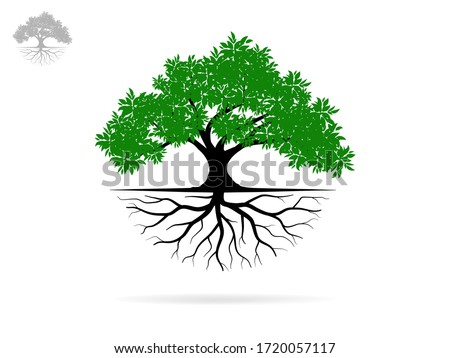 Trees and root with green leaves look beautiful and refreshing. Tree and roots LOGO style. #1720057117