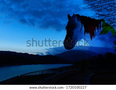 Silhouette of beautiful horse sunset and sunrise. Romantic sunset background with horse for web and picture on wall. Panorama illustration