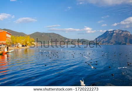 Lake and mountain under blue sky #1720222273