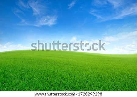 Green sloping meadows with blue sky and clouds background. #1720299298