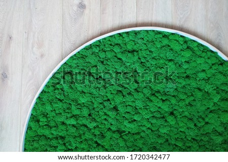 green decorative moss in a round picture on the wall