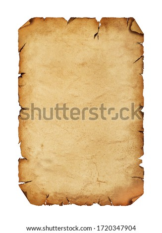 Close up one blank old antique vintage brown paper parchment scroll with copy space isolated on white background #1720347904