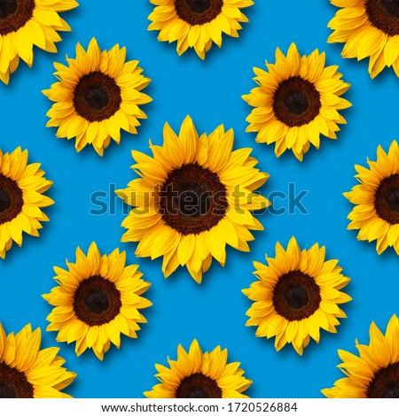 sunflowers flowers seamless pattern design on light blue background. Can be tiled