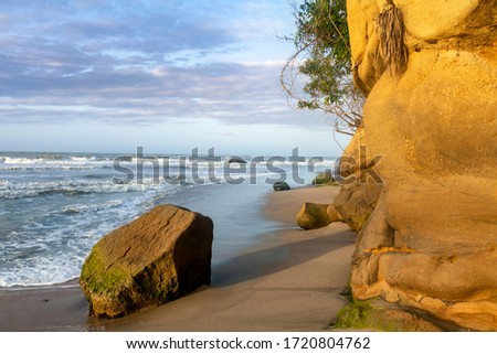 Palomino - Colombia, 19. January 2020: Single rock at the beach in Palomino, Colombia #1720804762