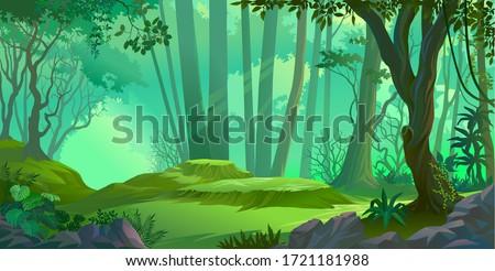 Sun rays falling deep into a thick jungle #1721181988