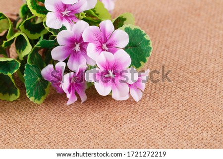 Pink fabric flowers on canvas background, closeup picture.