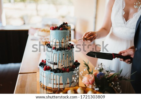 photo of a married couple cutting the cake #1721303809