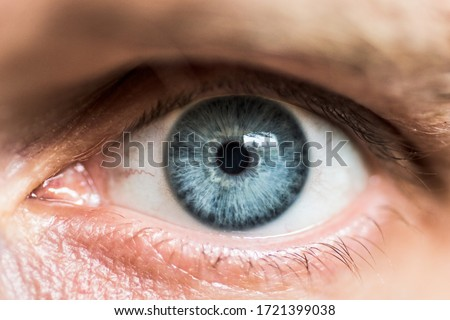macro photo of an eye Royalty-Free Stock Photo #1721399038