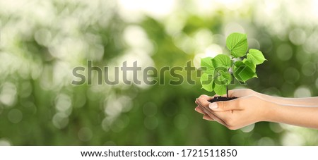 Woman holding small tree in soil on green blurred background, banner design with space for text. Ecology protection
