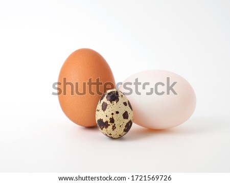 3 types of eggs concept on a white background: duck egg, chicken egg, quail egg. Placed to show different color and size characteristics, in addition raw eggs is ingredients for Cooking and Baking. #1721569726