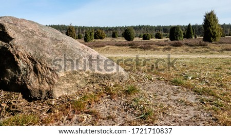 Rocks in front of a heath landscape with juniper bushes, relic of the ice age in Europe #1721710837