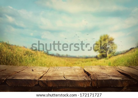 Spring green background. Grass and cloudscape  art Design. Summer environmetal landscape concept.  #172171727