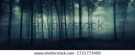 dark mysterious forest panorama, fantasy landscape Royalty-Free Stock Photo #1721773480