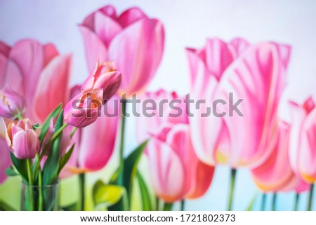 pink tulips on the picture of tulips. Flowers in a glass vase. Red with green leaves. Copy space for text