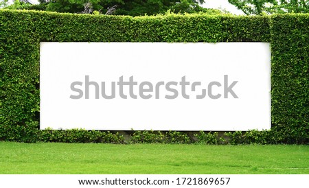 Blank advertising billboard with green leaves wall background on day noon light.