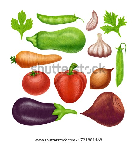 Great collection of the clip art vegetables. Hand made design. Suitable for packaging, textile, kitchen.