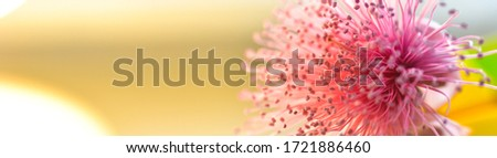 abstract background for web banners with space for text. HD Image and Large Resolution. can be used as wallpaper Royalty-Free Stock Photo #1721886460
