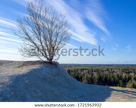 Hills and Dramatic blue sky over old lonely tree. Morning landscape. Lonely tree on a mountain meadow against. Copy space for text. Filtered Image for wallpaper, desktop. #1721963902