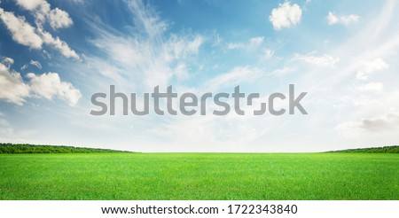 Green grass field and blue sky summer landscape background Royalty-Free Stock Photo #1722343840