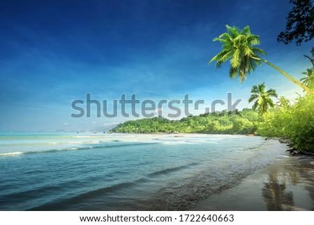 beach in sunset time, Mahe island, Seychelles #1722640663