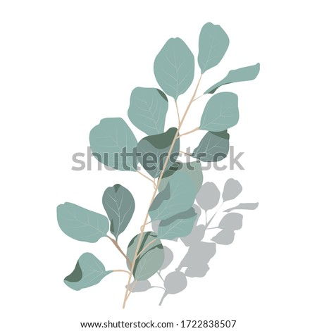 Vector stock illustration of eucalyptus leaves. Delicate tropical leaves for the bride's bouquet. A branch of mint-colored flowers. Spring or summer flowers for invitation, wedding or greeting cards.  #1722838507