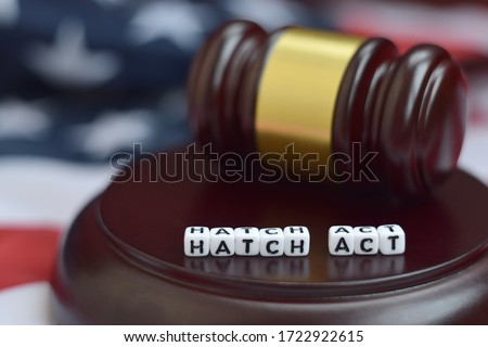 Justice mallet and Hatch act characters with US flag on background Royalty-Free Stock Photo #1722922615