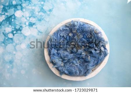 newborn digital composite, blue floral