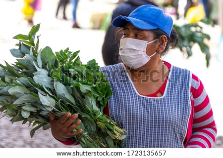 Woman in respiratory mask sells plants of eucalyptus in market during coronavirus pandemic in market in Cusco, Peru in Latin South America. Epidemic of coronavirus covid-19 #1723135657